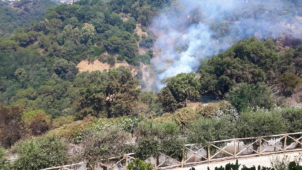 Incendio Parco 6