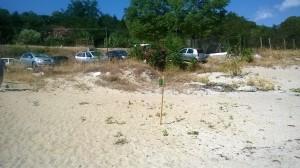 Pulizia della spiaggia a Soverato