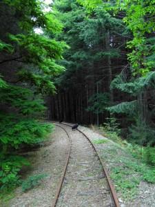 ferroviasilana