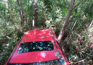 Auto finisce in un dirupo, mamma e figlia salvate dai carabinieri