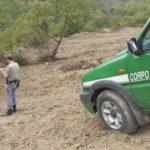 Distrugge 5 ettari di bosco per coltivare, una denuncia