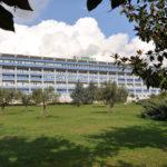 Virus dell'influenza H1N1, donna di 62 anni muore a Lamezia Terme
