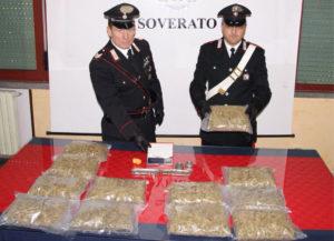 Montepaone – Nascondeva 4 chili di marijuana a casa della suocera, arrestato