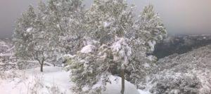 Maltempo – Ancora freddo polare. Neve, pioggia e venti forti in Calabria