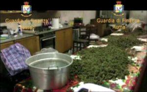 Maxi-sequestro marijuana in Sardegna, arrestato 40enne catanzarese