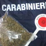 Fermato da carabinieri con mezzo chilo di marijuana, arrestato