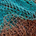 Trovati resti umani in reti da pesca