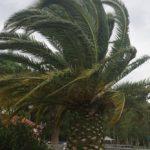 Maltempo – Avviso della Protezione civile, previsti venti forti in Calabria
