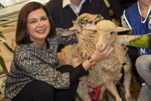 """Gli agnelli di Montecitorio """"arrivano"""" da … Crotone"""
