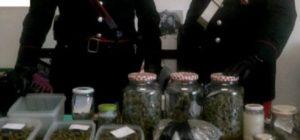 A spasso con uno zainetto pieno di droga, arrestato studente universitario