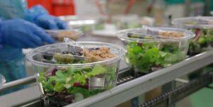 Pipistrello morto nell'insalata, l'animale è stato trovato in un sacchetto di verdure pronte al consumo