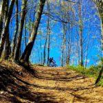 L'anello dei Monasteri, escursione in mountain bike a Soveria Mannelli
