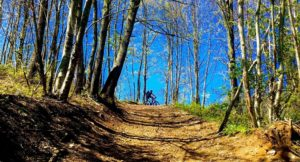 L'anello dei Monasteri, escursione in mountain bike a Soveria Mannelli