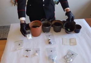 Droga nascosta sotto la legna, 32enne arrestato a Centrache