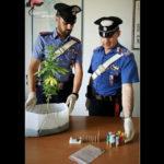 Spaccio e detenzione illegale di armi, 22enne arrestato nel catanzarese
