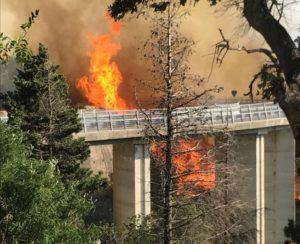 Catanzaro – Chiusa provvisoriamente per incendio la SS 109 bis