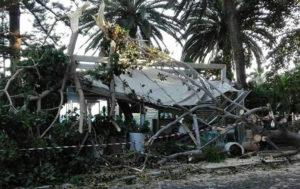 Ramo albero cade su gazebo gelateria, nessun ferito