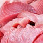 Continua l'allerta in Italia per l'istamina nel tonno spagnolo. Ministero Salute ritira lotto specifico
