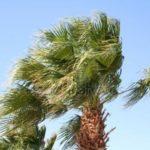 Allerta Meteo – In arrivo venti forti in Calabria