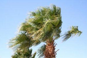 Allerta Protezione Civile Calabria, previsti venti forti di burrasca