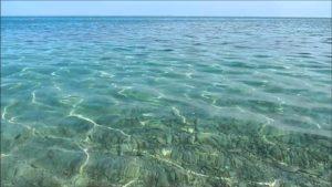 Balneazione – Due punti non conformi sulla costa di Amantea