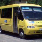 Il Ministero dell'Istruzione è responsabile dell'incidente subito dallo scolaro investito dal bus fuori da scuola