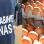 Uova fresche contaminate, scatta il ritiro del Ministero della Salute. Provengono dalla Calabria