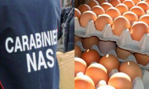 Uova contaminate al Fipronil, scatta il ritiro del Ministero della Salute