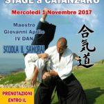 Mercoledì 1 Novembre lo stage di Aikido a Catanzaro
