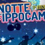 L'Associazione Commercianti Soverato presenta la seconda edizione di Miss Notte Ippocampo