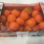 Le Clementine di Calabria nei punti vendita Coop a sostegno della ricerca sull'Alzheimer