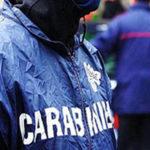 'Ndrangheta e narcotraffico – Operazione dei Ros, 12 arresti