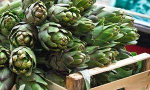 Frutta e ortaggi di stagione. I carciofi, non solo toccasana per il fegato ma fanno bene anche al cuore