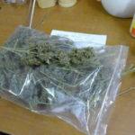 Droga – 21 Kg di marijuana in casa, due arresti