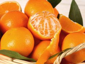 Elogio del mandarino. Un toccasana per la nostra salute. Tra le qualità è un nemico di ansia e insonnia