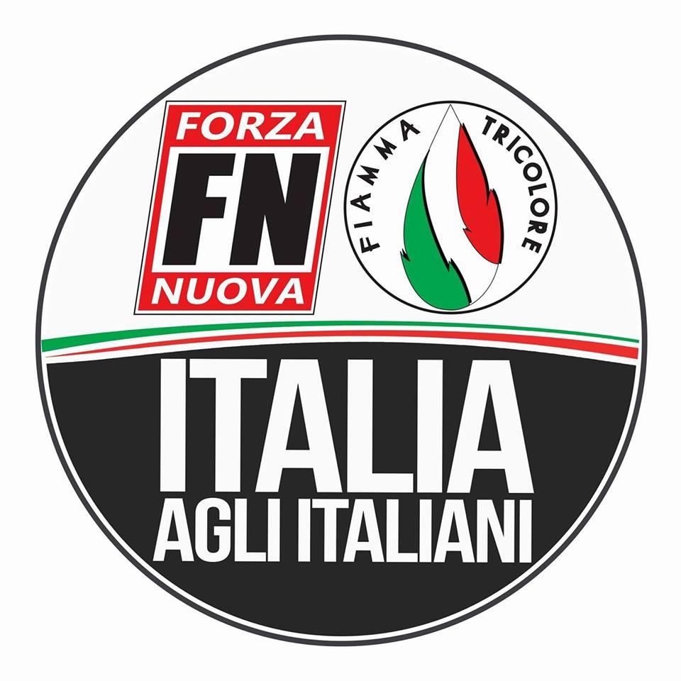 Elezioni politiche del 2018 - Pagina 3 Logo-FN-Fiamma
