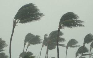 Piogge, venti forti e mareggiate in Calabria