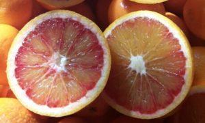 Nella nuova linea di prodotti 100% italiani spicca il succo di frutta con agrumi di Calabria