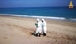 Fusto in avanzato stato di degrado trovato sulla spiaggia di Roccelletta