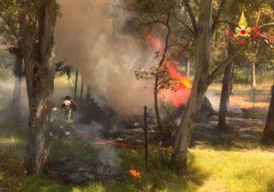 Incendio nella pineta sul lungomare di Sellia Marina, panico per una bombola gpl