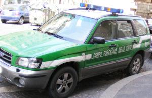 Squillace – Cane ucciso e appeso al cancello di un cantiere