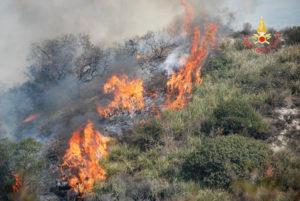 Girifalco – Incendio lambisce case, salvati animali