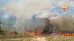 Incendio devastante nel comune di Sellia Marina
