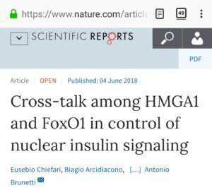 Identificato uno dei principali meccanismi di regolazione trascrizionale della glicemia: 2 ricercatori soveratesi tra gli artefici della scoperta