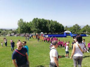 """Coni Catanzaro – Successo per la """"Giornata nazionale dello Sport"""""""