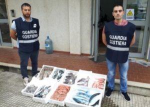 Sequestrati in due ristoranti di Soverato e Borgia 22 kg di prodotti ittici congelati
