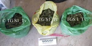 Soverato – Due kg e mezzo di marijuana nel portabagagli, arrestato