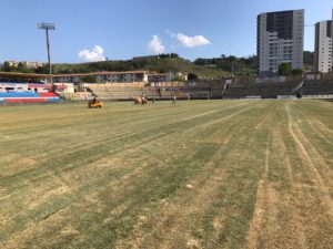 L'erba del campo di Cosenza, e la triste figura della Calabria