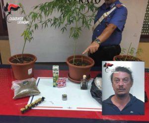 Acquistava stupefacenti online dalla Spagna, arrestato a Copanello 43enne di Roma