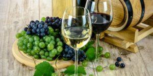 Sei vini calabresi scelti nella ristretta cerchia dell'eccellenza
